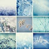 τα άτομα σχεδίου συλλογής που τίθενται snowflakes χιονιού το χειμώνα σας Στοκ Εικόνες