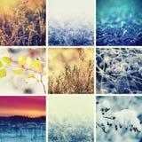 τα άτομα σχεδίου συλλογής που τίθενται snowflakes χιονιού το χειμώνα σας Στοκ φωτογραφίες με δικαίωμα ελεύθερης χρήσης