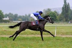 τα άλογα αλόγων λουριών συναγωνίζονται τη στρογγυλοποίηση της στροφής τρία Στοκ εικόνα με δικαίωμα ελεύθερης χρήσης