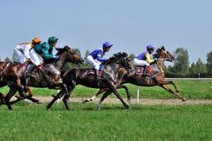 τα άλογα αλόγων λουριών συναγωνίζονται τη στρογγυλοποίηση της στροφής τρία Στοκ Εικόνα