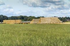 Τα δέματα αχύρου σύλλεξαν μέσα μετά από το χρόνο συγκομιδών στο αγρόκτημα Στοκ Εικόνα