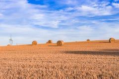 τα δέματα ξεραίνουν το καλοκαίρι αχύρου του Ισραήλ καλλιεργήσιμου εδάφους Στοκ Φωτογραφία
