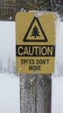 Τα δέντρα δεν κινούνται Στοκ φωτογραφία με δικαίωμα ελεύθερης χρήσης