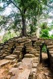 Τα δέντρα στους τοίχους ναών anglicanism Καμπότζη Στοκ Εικόνες