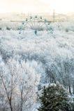 Τα δέντρα χιονιού με τα ferris κυλούν την πανοραμική άποψη Στοκ φωτογραφία με δικαίωμα ελεύθερης χρήσης