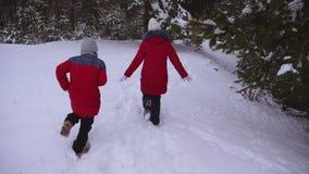 Τα έφηβη που τρέχουν στο χειμερινό χιόνι πεύκων σταθμεύουν μέσω snowdrifts Το παιχνίδι παιδιών προφθάνει το χειμώνα Διακοπές Χρισ φιλμ μικρού μήκους