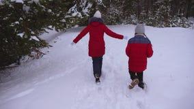 Τα έφηβη που τρέχουν στο χειμερινό χιόνι πεύκων σταθμεύουν μέσω snowdrifts Το παιχνίδι παιδιών προφθάνει το χειμώνα Διακοπές Χρισ απόθεμα βίντεο