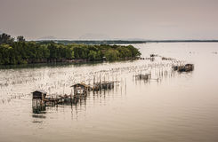 Τα αγροκτήματα ψαριών, κλουβιά ψαριών στην εκβολή Laem τραγουδούν Στοκ Φωτογραφία