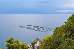 Τα αγροκτήματα ψαριών στην Ελλάδα Στοκ εικόνα με δικαίωμα ελεύθερης χρήσης