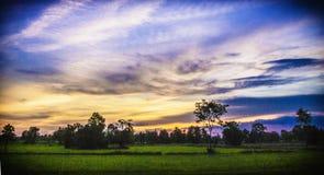 τα ακρυλικά χρώματα έχουν ι ηλιοβασίλεμα εικόνων τοπίων ο ίδιος το χρωματισμένο Στοκ Εικόνα