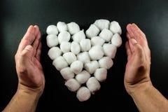 Τα ανθρώπινα χέρια προστατεύουν μια καρδιά οφθαλμών βαμβακιού Στοκ φωτογραφία με δικαίωμα ελεύθερης χρήσης