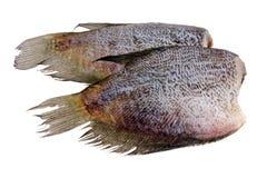 τα αποξηραμένα ψάρια απομόνωσαν αλατισμένο το φύλλο λευκό ήλιων Στοκ Εικόνες