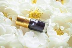 Τα αραβικά fragrances αρώματος ή agarwood πετρελαίου ροδελαίων oudh με αυξήθηκαν στο μίνι μπουκάλι στοκ εικόνα