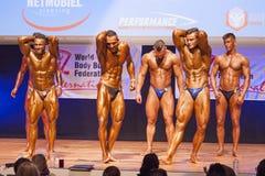 Τα αρσενικά bodybuilders λυγίζουν τους μυς τους και παρουσιάζουν διάπλασή τους Στοκ φωτογραφία με δικαίωμα ελεύθερης χρήσης