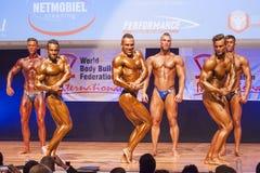 Τα αρσενικά bodybuilders λυγίζουν τους μυς τους και παρουσιάζουν καλύτερο physiqu τους Στοκ εικόνα με δικαίωμα ελεύθερης χρήσης