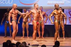 Τα αρσενικά bodybuilders λυγίζουν τους μυς τους και παρουσιάζουν καλύτερο physiqu τους Στοκ Φωτογραφία