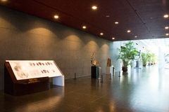 Τα ασιατικά κινέζικα, Πεκίνο, εθνικό κέντρο για τις τέχνες προς θέαση, σύγχρονη αρχιτεκτονική Στοκ Φωτογραφίες