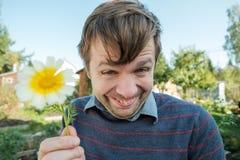Τα αστεία χαμόγελα νεαρών άνδρων ανόητα και δίνουν μια μαργαρίτα Στοκ φωτογραφίες με δικαίωμα ελεύθερης χρήσης