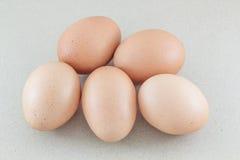 Τα αυγά απομόνωσαν το υπόβαθρο καφετιού εγγράφου Στοκ Φωτογραφίες