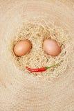 Τα αυγά και το τσίλι καθορισμένα μοιάζουν με το πρόσωπο Στοκ Εικόνες