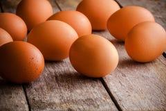 τα αυγά καλλιεργούν φρέσ&k Στοκ Εικόνα