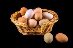 τα αυγά κοτόπουλου καλαθιών ανασκόπησης σκιάζουν τη μαλακή άσπρη λυγαριά Στοκ Φωτογραφία