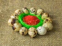 Τα αυγά ορτυκιών είναι σε έναν κύκλο γύρω από το πλαστικό μπλε κύπελλο του κόκκινου άλατος σε έναν ξύλινο πίνακα στοκ εικόνα