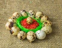Τα αυγά ορτυκιών είναι σε έναν κύκλο γύρω από το πλαστικό μπλε κύπελλο του κόκκινου άλατος σε έναν ξύλινο πίνακα στοκ εικόνα με δικαίωμα ελεύθερης χρήσης