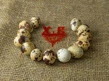 Τα αυγά ορτυκιών είναι σε έναν κύκλο σε έναν ξύλινο πίνακα στοκ εικόνα