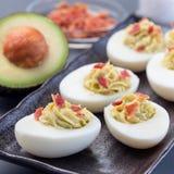 Τα αυγά Deviled γέμισαν με το αβοκάντο, το λέκιθο αυγών και γεμίζοντας μαγιονέζας, που διακοσμήθηκαν με το μπέϊκον, τετραγωνικό σ στοκ εικόνα με δικαίωμα ελεύθερης χρήσης