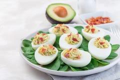Τα αυγά Deviled γέμισαν με το αβοκάντο, το λέκιθο αυγών και την πλήρωση μαγιονέζας που διακοσμήθηκαν με το μπέϊκον στα φύλλα σπαν στοκ εικόνες με δικαίωμα ελεύθερης χρήσης
