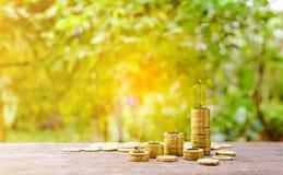 Τα αυξανόμενα ασημένια νομίσματα και η διάσωση του βήματος χρημάτων πετυχαίνουν Στοκ Εικόνα
