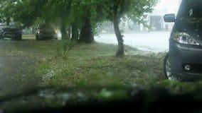 Τα αυτοκίνητα σταμάτησαν κάτω από μια αναμονή δέντρων όταν στάση μεγάλη απόθεμα βίντεο
