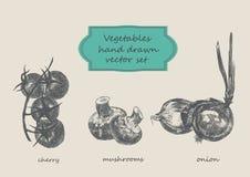 Τα λαχανικά δίνουν το συρμένο σύνολο Κεράσι, μανιτάρια, κρεμμύδι Στοκ φωτογραφία με δικαίωμα ελεύθερης χρήσης