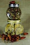 Τα βάζα ολόκληρου του πιπεριού, του φύλλου κόλπων και του τσίλι Στοκ φωτογραφία με δικαίωμα ελεύθερης χρήσης