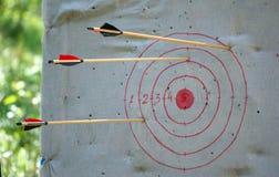 Τα βέλη που κολλούν από τις άκρες στόχων Στοκ φωτογραφία με δικαίωμα ελεύθερης χρήσης