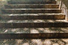 Τα βήματα πετρών της σκάλας Στοκ εικόνα με δικαίωμα ελεύθερης χρήσης