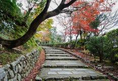Τα βήματα που καταλήγουν με το φθινόπωρο χρωμάτισαν τα φύλλα σε Arashiyama, Kyot Στοκ εικόνες με δικαίωμα ελεύθερης χρήσης