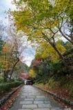 Τα βήματα που οδηγούν κάτω με το φθινόπωρο χρωμάτισαν τα φύλλα Στοκ Εικόνα