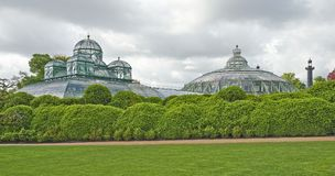 Τα βασιλικά θερμοκήπια Laeken, Βρυξέλλες, Βέλγιο Στοκ φωτογραφίες με δικαίωμα ελεύθερης χρήσης