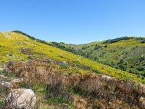 Τα βουνά και δένουν στη Γαλλία Στοκ εικόνα με δικαίωμα ελεύθερης χρήσης