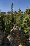 Τα βουνά κρυφοκοιτάζουν έξω πέρα από την κατακόρυφο δέντρων πεύκων Στοκ Εικόνα
