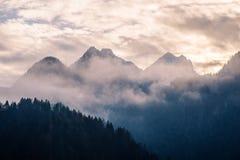 Τα βουνά στην ομίχλη Στοκ Εικόνες