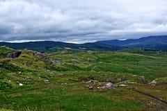 Τα βουνά του Κορκ και ιρλανδικών αγελάδων, Ιρλανδία Στοκ Εικόνα