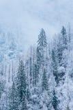 Τα βουνά το χειμώνα Στοκ φωτογραφία με δικαίωμα ελεύθερης χρήσης