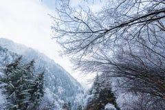 Τα βουνά το χειμώνα Στοκ εικόνα με δικαίωμα ελεύθερης χρήσης