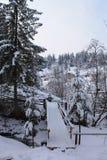 Τα βουνά το χειμώνα carpathians Στοκ Εικόνες