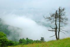 Τα βουνά χρώματος ομίχλης Στοκ Φωτογραφίες