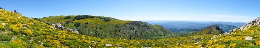 Τα βουνά Cevennes στη Γαλλία Στοκ φωτογραφίες με δικαίωμα ελεύθερης χρήσης