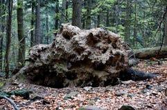 Τα βουνά Swietokrzyskie Στοκ φωτογραφία με δικαίωμα ελεύθερης χρήσης
